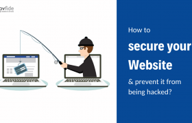 Securing website